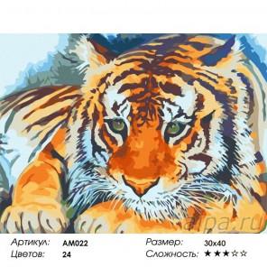 Рожденный в Приморье Раскраска картина по номерам Color Kit