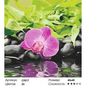 Розовое отражение Раскраска по номерам на холсте Color Kit