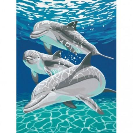 * Дельфины 91326 Раскраска по номерам Dimensions