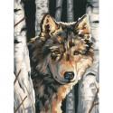 Волк среди берез 91325 Раскраска по номерам Dimensions