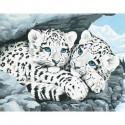 Детеныши снежного леопарда Раскраска (картина) по номерам акриловыми красками Dimensions