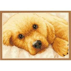 Золотой щенок 65038 Набор для вышивания Dimensions ( Дименшенс )