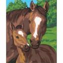 Лошадь и жеребенок Раскраска (картина) по номерам Dimensions