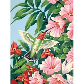 Колибри и фуксия 91310 Раскраска по номерам Dimensions