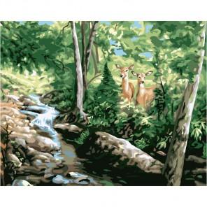 Олени у ручья 21719 Раскраска по номерам акриловыми красками Plaid