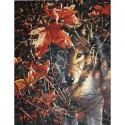 Волк в осеннем лесу 91362 Раскраска по номерам акриловыми красками Dimensions