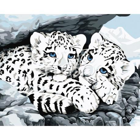 Детеныши снежного леопарда Раскраска по номерам акриловыми красками на холсте Iteso