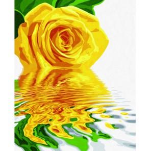 Желтая роза Раскраска по номерам акриловыми красками Schipper (Германия)