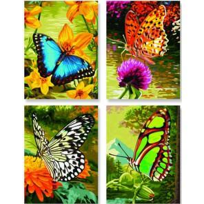 Бабочки Раскраски по номерам акриловыми красками Schipper (Германия)