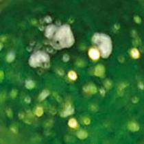 Зелёный глиттер 948